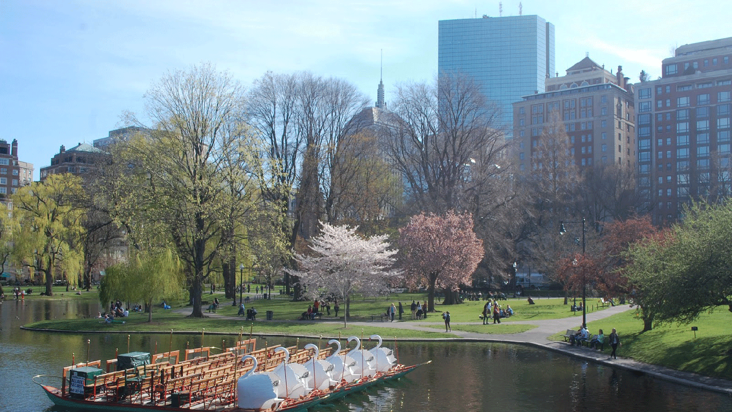 Springtime in Boston